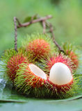 Asian fruit rambutan. On banana leaves Royalty Free Stock Photography