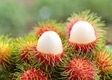 Asian  fruit rambutan Stock Photography