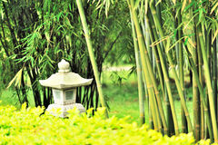 Asian garden Stock Image