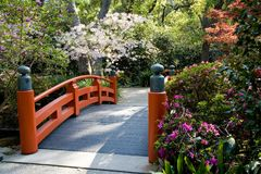 Asian garden. Footbridge in an Asian style garden with trees and bushes in spring bloom Stock Photography