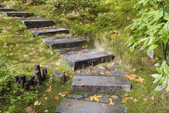 Asian Garden Granite Stone Steps. Asian Inspired Japanese Garden Granite Slabs Stone Steps with Moss and Fall Leaves Stock Images