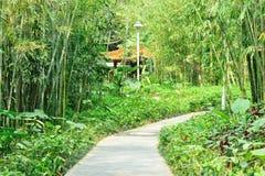Asian garden Stock Photography