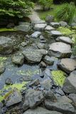 Asian garden with pond Stock Images
