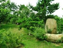 Asian garden royalty free stock photo