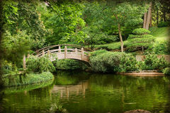 Asian gardens. Japanese gardens with water and bridge Stock Images