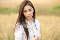 Free Asian Girl At Wheat Field Stock Photography - 136990002