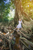Asian girl on the base of trees Royalty Free Stock Images