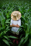 Asian girl in corn garden Royalty Free Stock Photography