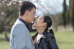 Asian girl and european guy kissing against of blossoming almond Stock Images
