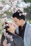 Asian girl and european guy kissing among of blossoming almond b Royalty Free Stock Image