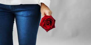 Asian Girl Flower Freshness Relaxation Rose Concept Royalty Free Stock Photos