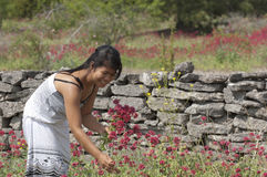 Asian girl and flowers Stock Image