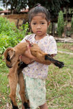 Asian girl with goat Royalty Free Stock Image