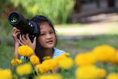 Asian girl interesting with dslr camera and yellow flower. Stock Photos