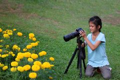 Asian girl learning to use dslr camera in the garden Royalty Free Stock Photos