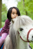 Asian girl on little horse Royalty Free Stock Image