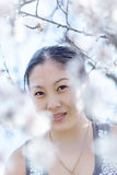 Asian girl looks at camera through blossoming almond branches Stock Photography
