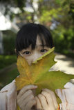 Asian girl with maple leaf Stock Images