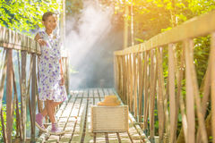 Asian girl on the old bridge. In the forest Stock Photo
