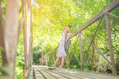 Asian girl on the old bridge. In the forest Stock Photography
