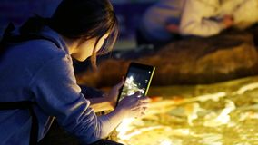 Asian girl photographs small fishes on the tablet stock video