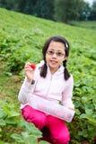 Asian Girl Picking Strawberries Stock Photos