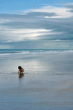 Asian girl playing alone on the big ocean shore Royalty Free Stock Photos