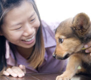 Asian girl and puppy Stock Image