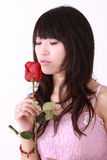 Asian girl and rose. A beautiful Asian girl  holds a red rose on white background Royalty Free Stock Photos