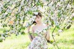 Asian girl in spring in park. sakura, cherry or apple blossom background Stock Image