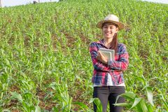 Asian girl standing and smiling in her corn field, Happy Farmer stock image