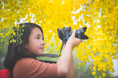 Free Asian Girl Take Photo With Blooming Yellow Flower Royalty Free Stock Photo - 91524655