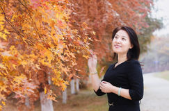 An Asian girl by a tree Stock Image