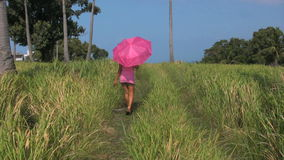 Filipino woman walking along a green grass field in the Philippines stock video footage