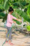 Asian girl watering banana tree in field. With sunny day Stock Images