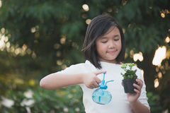 Asian girl watering a red flower in the garden Stock Image