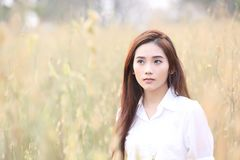 Asian girl at wheat field royalty free stock photography
