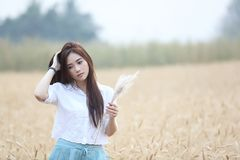 Asian girl at wheat field stock photography