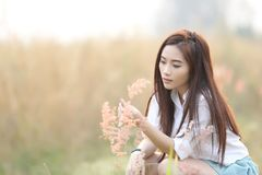 Asian girl at wheat field royalty free stock images
