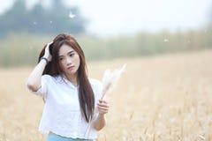 Asian girl at wheat field stock photo