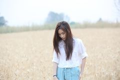 Asian girl at wheat field royalty free stock image