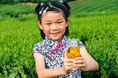 Asian girls show green tea royalty free stock photos