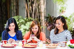 Asian girls using their mobile phones. Three Indonesian girlfriends using their mobile phones, they chat or text and read emails in a tropical environment Stock Image