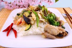 Asian glass noodles, rice, meat, prawn vegetables and cherry blossoms Royalty Free Stock Image