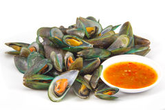 Asian green mussel Royalty Free Stock Images