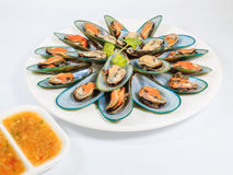 Asian Green Mussel Royalty Free Stock Image