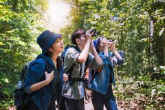 Asian Group of young people Hiking with friends backpacks walking together and looking map and taking photo camera by the road and royalty free stock photos