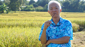Asian guy in bright shirt at his SME farmland. Abstract own agri Stock Images