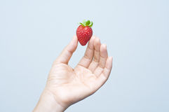 An asian hand holding a strawberry Royalty Free Stock Photography
