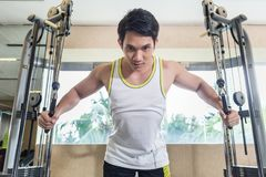 Asian handsome man exercising cable crossover for chest muscles. Low-angle view portrait of an Asian handsome man looking down with concentration while Royalty Free Stock Images